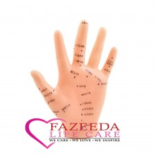 Model Acupuncture Hand